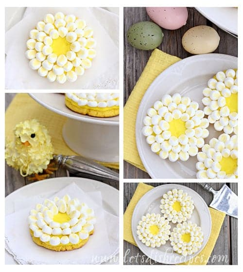 Daisy Cookie Collage