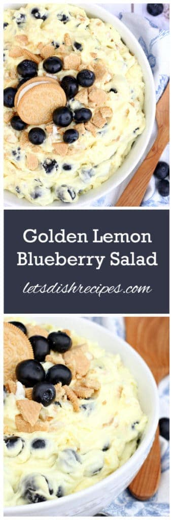 Lemon Blueberry Salad Pin