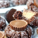 Chocolate Peanut Butter Cup Blossoms